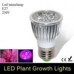 LED Lamp Taimedele 5W E27