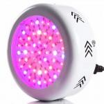 LED Taimelamp 150W (50W)