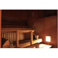 Led Puitvõrega  süvistatav valgusti sauna