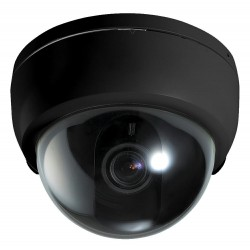Pettekaamera kaamera makett